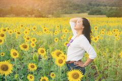 Happy woman in sunflower field smiling with happiness. Due to healthy food. Happy people, health care and agriculture business concept. Happy farmer or farm Royalty Free Stock Images