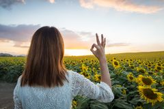 Happy woman in sunflower field. Summer girl in flower field cheerful. Asian Caucasian young woman raise arm OK and freedom show in Stock Photography