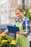 Happy woman with tablet pc in greenhouse Royalty Free Stock Photography