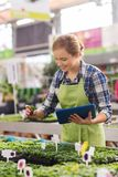 Happy woman with tablet pc in greenhouse Royalty Free Stock Image