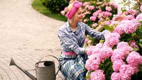 Happy woman taking care of flowers in garden. Watering flowers in garden centre. Hydrangea. Spring and summer stock video