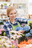 Happy woman taking care of flowers in greenhouse Stock Photo