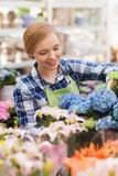 Happy woman taking care of flowers in greenhouse Stock Photography