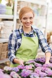 Happy woman taking care of flowers in greenhouse Royalty Free Stock Photo