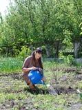 Happy woman tending to her vegetable garden Stock Images
