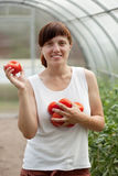 Happy  woman with tomato harvest Royalty Free Stock Photos