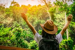 Happy woman tourist with hat and backpack standing and raise her hands up in tropical forest. Young traveler enjoy beautiful scene stock photography
