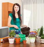 Happy woman transplanting  flowers Royalty Free Stock Photography