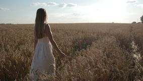 Happy woman walking on golden wheat field stock footage