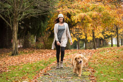 Happy woman walking her Golden Retriever Dog in a park with Fall Royalty Free Stock Image