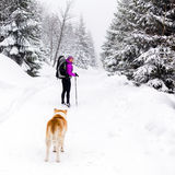 Happy woman walking in winter woods with dog Stock Image