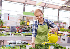 Happy woman with watering can in greenhouse Stock Photos