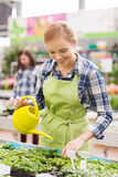Happy woman with watering can in greenhouse Royalty Free Stock Image