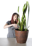 Happy Woman Watering a Green Plant in a Pot Stock Photography