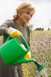 Happy Woman Watering Plants Stock Photos
