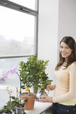 Happy Woman Watering Plants At Window Sill Royalty Free Stock Image
