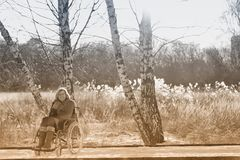 Happy woman on wheelchair in the snow Royalty Free Stock Photos