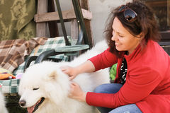Happy woman with white fluffy Samoyed dog Stock Images