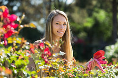 Happy woman in yard gardening Stock Image