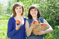 Happy  women with apples in orchard Stock Images