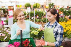 Happy women choosing flowers in greenhouse Stock Images