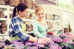 Happy women choosing flowers in greenhouse Royalty Free Stock Photos