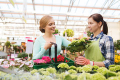 Happy women choosing flowers in greenhouse Stock Image