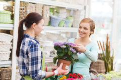 Happy women choosing flowers in greenhouse Royalty Free Stock Images
