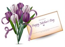 Happy women day tulips bouquet Vector. beautiful card backgrounds. Happy women day tulips bouquet Vector. beautiful card background Royalty Free Stock Photos