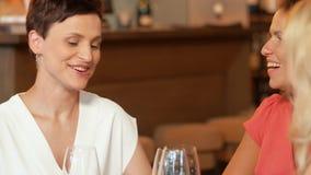 Happy women drinking wine at bar or restaurant stock video