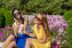 Happy women friends eating ice cream. Happy young beautiful women friends eating ice cream Stock Images