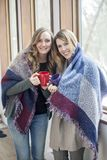 Happy women friends at home in winter stock photo