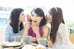 Happy woman friends in restaurant Stock Photography