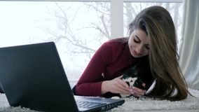 Happy women with home animal Spends leisure with laptop on holiday. On weekend stock footage