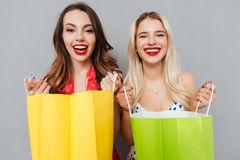 Happy women with packages Stock Images