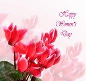 Happy Women`s Day celebration Stock Images