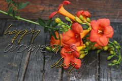 Happy Women`s Day Greeting Card with Orange Lillies. On wood with English Text royalty free stock photography