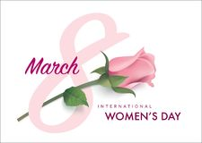 Happy Women`s Day. March 8, Happy Women`s Day design with number 8 and rose Royalty Free Stock Images