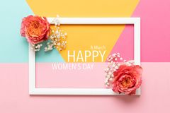 Happy Women`s Day Pastel Colored Background. Flat lay greeting card with beautiful coral hue roses. Happy Women`s Day Pastel Colored Background. Flat lay royalty free stock image