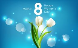 Happy women's day and white tulips flowers on blue background Royalty Free Stock Images