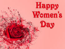 Happy Womens Day background with red rose stock photo