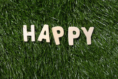 Happy Wooden Sign On Grass Royalty Free Stock Image