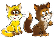 Happy yellow and brown cats Stock Image