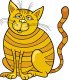 Happy Yellow Cat Stock Image