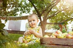 The happy young baby girl during picking apples in a garden outdoors Royalty Free Stock Image