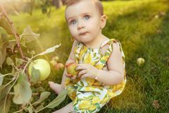 The happy young baby girl during picking apples in a garden outdoors Royalty Free Stock Images