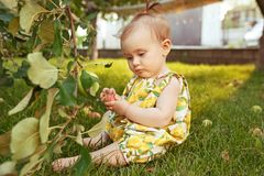 The happy young baby girl during picking apples in a garden outdoors Royalty Free Stock Photo
