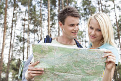 Happy young backpackers reading map in forest Royalty Free Stock Images