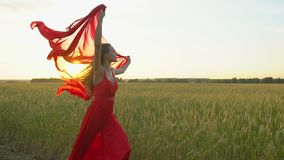 Happy young beautiful woman in red dress with scarf running on wheat field in sunset summer, Freedom health happiness. Happy young beautiful woman in red dress stock video