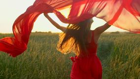 Happy young beautiful woman in red dress with scarf running on wheat field in sunset summer, Freedom health happiness. Happy young beautiful woman in red dress stock footage